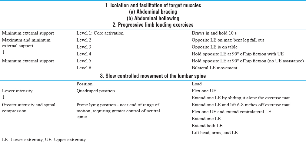 Table 1: Dynamic Muscular Stabilization Training Program